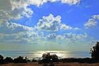 Coral Vista