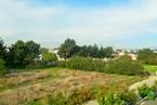 Апартаменты в Пафосе #037