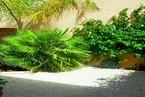 Таунхауз в Пафосе #018