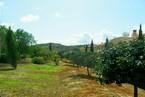 Таунхауз в Пафосе #021