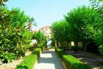 Таунхауз в Пафосе #022