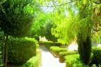 Таунхауз в Пафосе #026