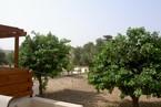 Таунхауз в Пафосе #070