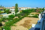 Таунхауз в Пафосе #077