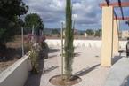 Вилла в Пафосе #015