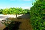Вилла в Пафосе #016